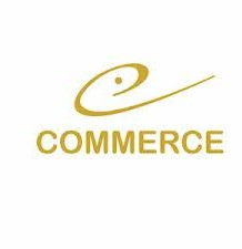 Top Commerce Colleges In Haryana