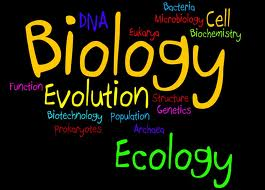 Biology Sample Papers for Class 10 ICSE