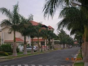 MG International School image