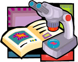 Solved Biology Sample Paper for Class 12